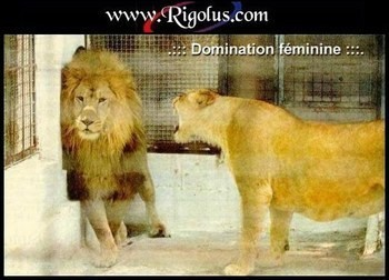 domination_feminine.jpg
