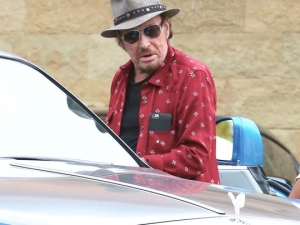 johnny hallyday,décès,laetitia, rock,