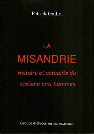 misandrie,galit,homme battu,ges,sexisme,sylvianne spitzer,violence conjugale