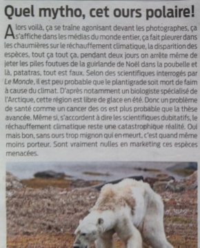 climat,réchauffement,ours,banquise,glace,mer,cancer,carbocentrisme,paul nicklen,holocène,national geographic,